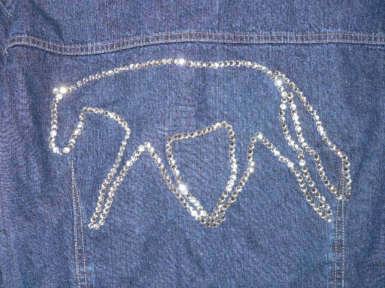 close up of crystal jacket design